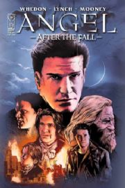 Angel After The Fall #14 Cover B (2008) IDW Publishing comic book